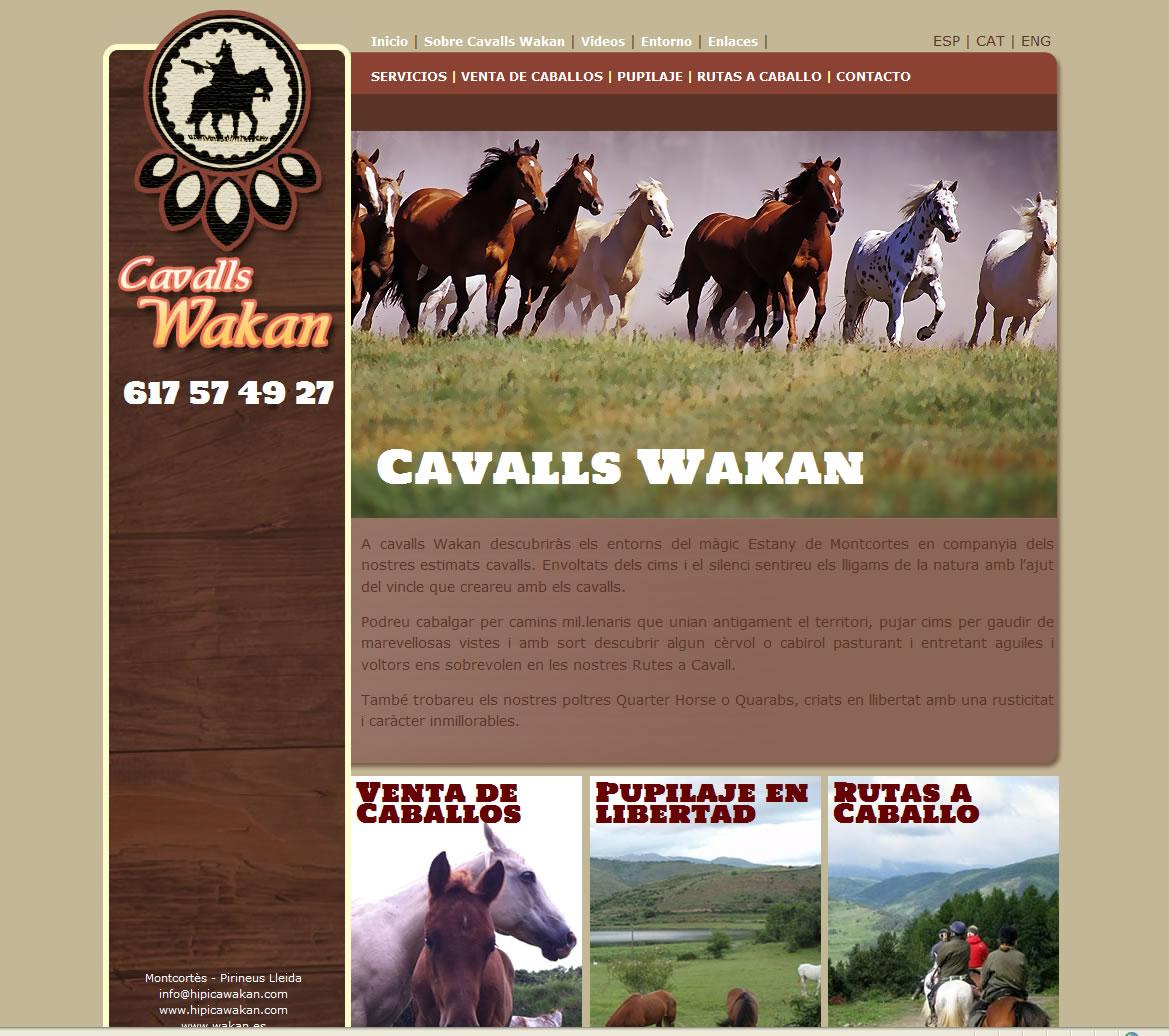Portal  Criador de Cavalls Quarter Horse.